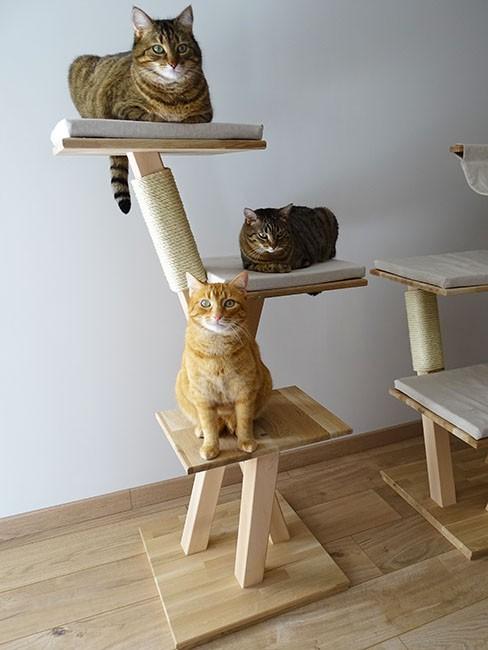 Arbre à chat design 'Hellébore'