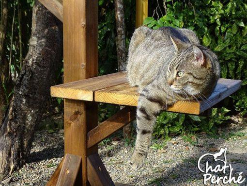 Arbre à chat extérieur Classic